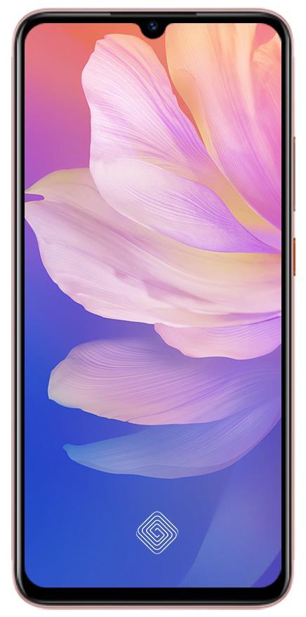 Vivo S1 Pro Display Design
